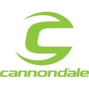 Cannodale Lefty / headshok (25)