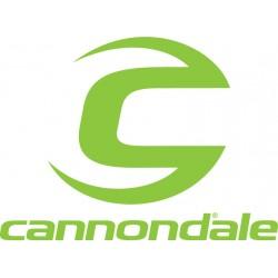Cannodale Lefty / headshok